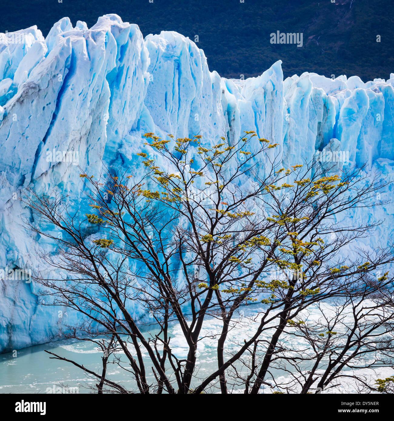 Le Glacier Perito Moreno est un glacier situé dans le Parc National Los Glaciares, dans le sud-ouest de la province de Santa Cruz, en Argentine. Photo Stock