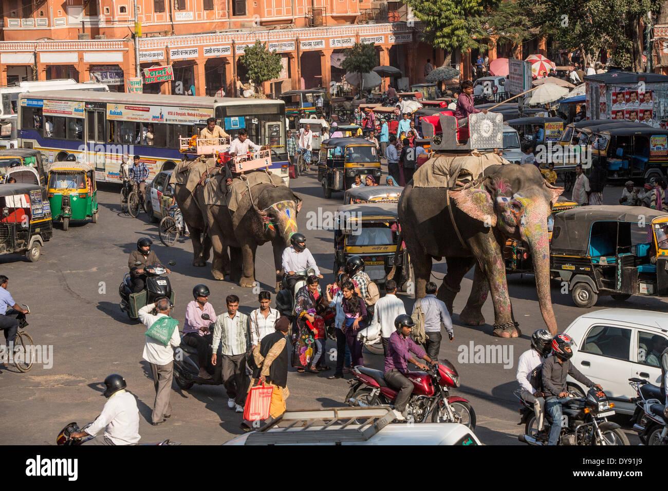 Trafic, Jaipur, Rajasthan, Inde, Asie, l'Inde, de la circulation, des transports, de l'éléphant, voitures, automobiles, motos, motos, Photo Stock