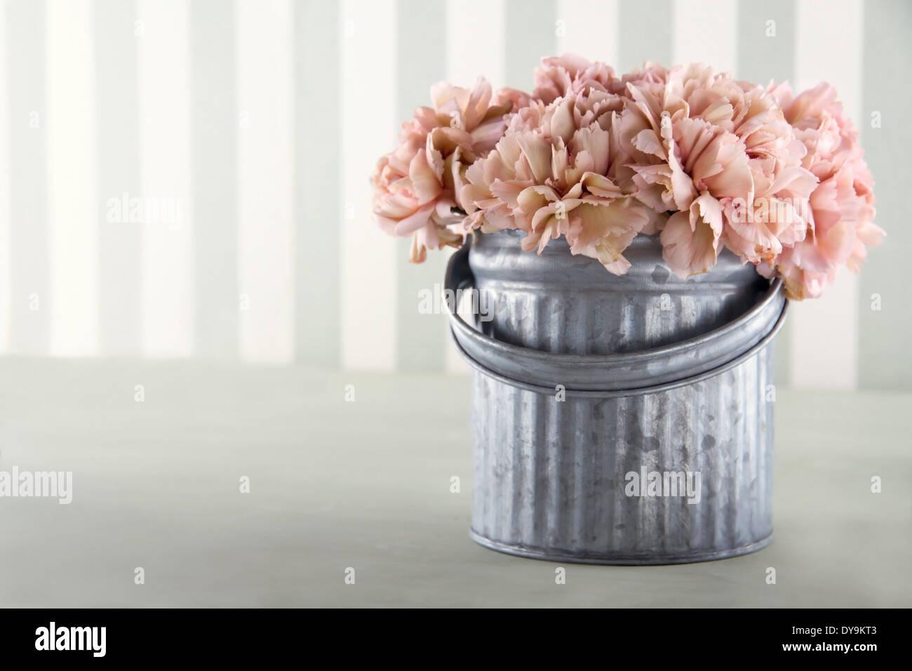 Carnation couleur abricot fleurs dans un seau en métal sur fond à rayures vintage with copy space Banque D'Images