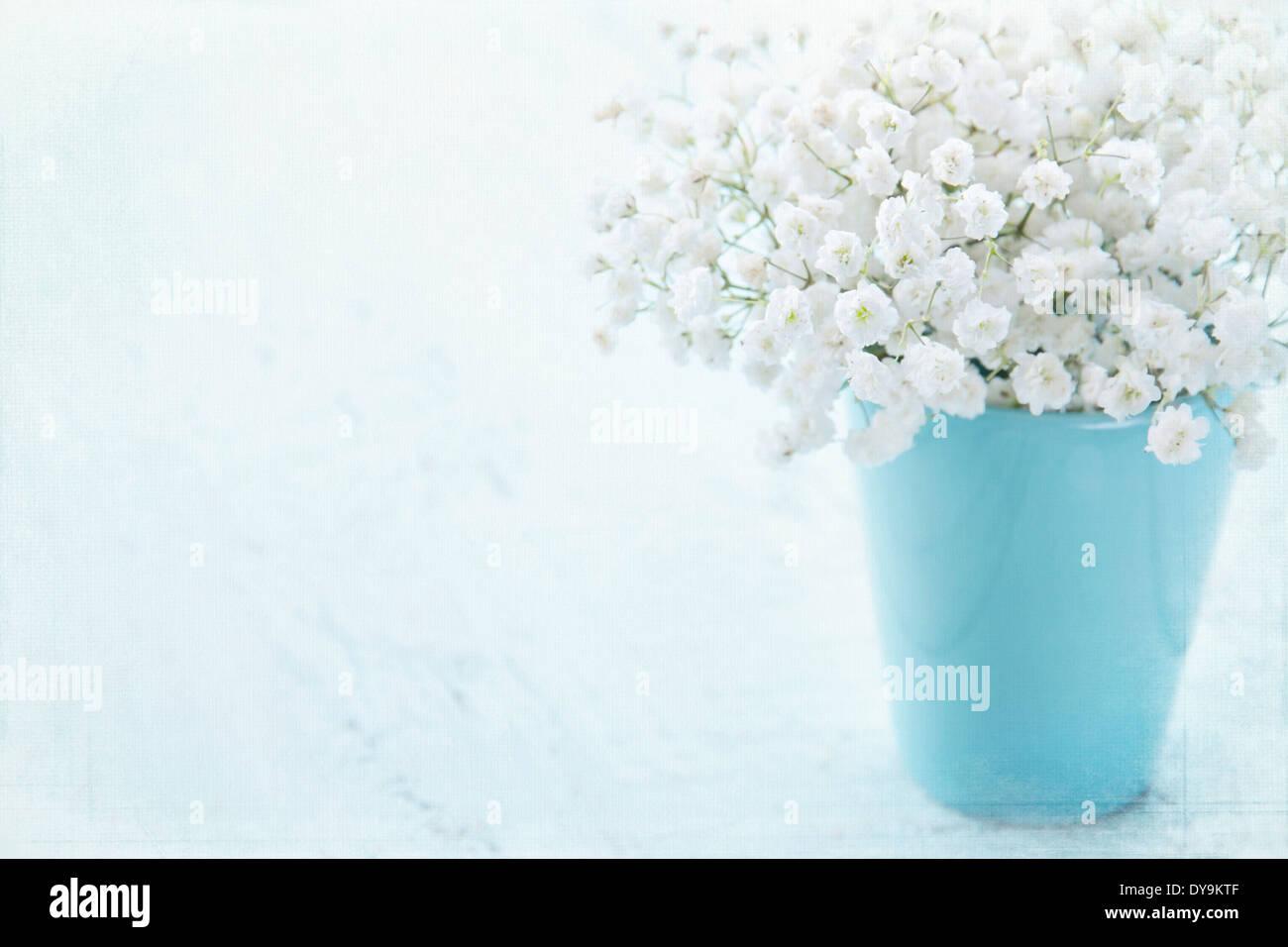 La respiration du bébé blanc fleurs dans un vase bleu clair sur fond texturé vintage Banque D'Images