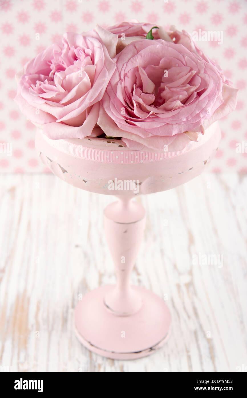 Roses roses dans un vase en bois couleur pastel vintage sur fond blanc shabby chic en bois Banque D'Images