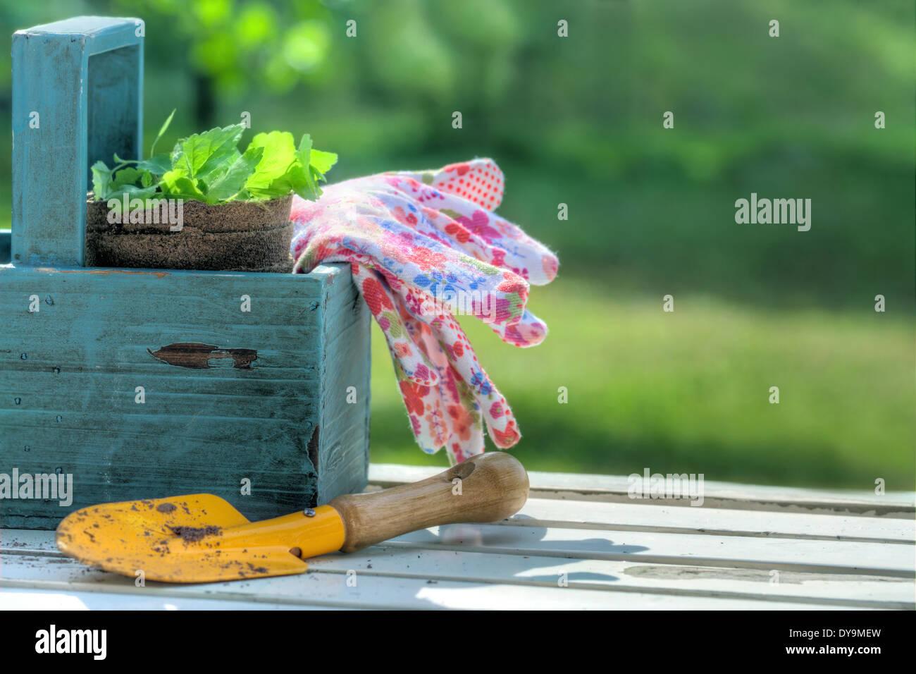 Outils de jardin dans une boîte à outils en bois bleu sur fond vert de jardin - concept pour le jardinage Banque D'Images