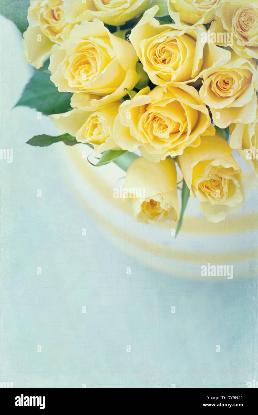 Vase à rayures avec un bouquet de roses printemps jaune sur fond texturé vintage bleu clair Banque D'Images