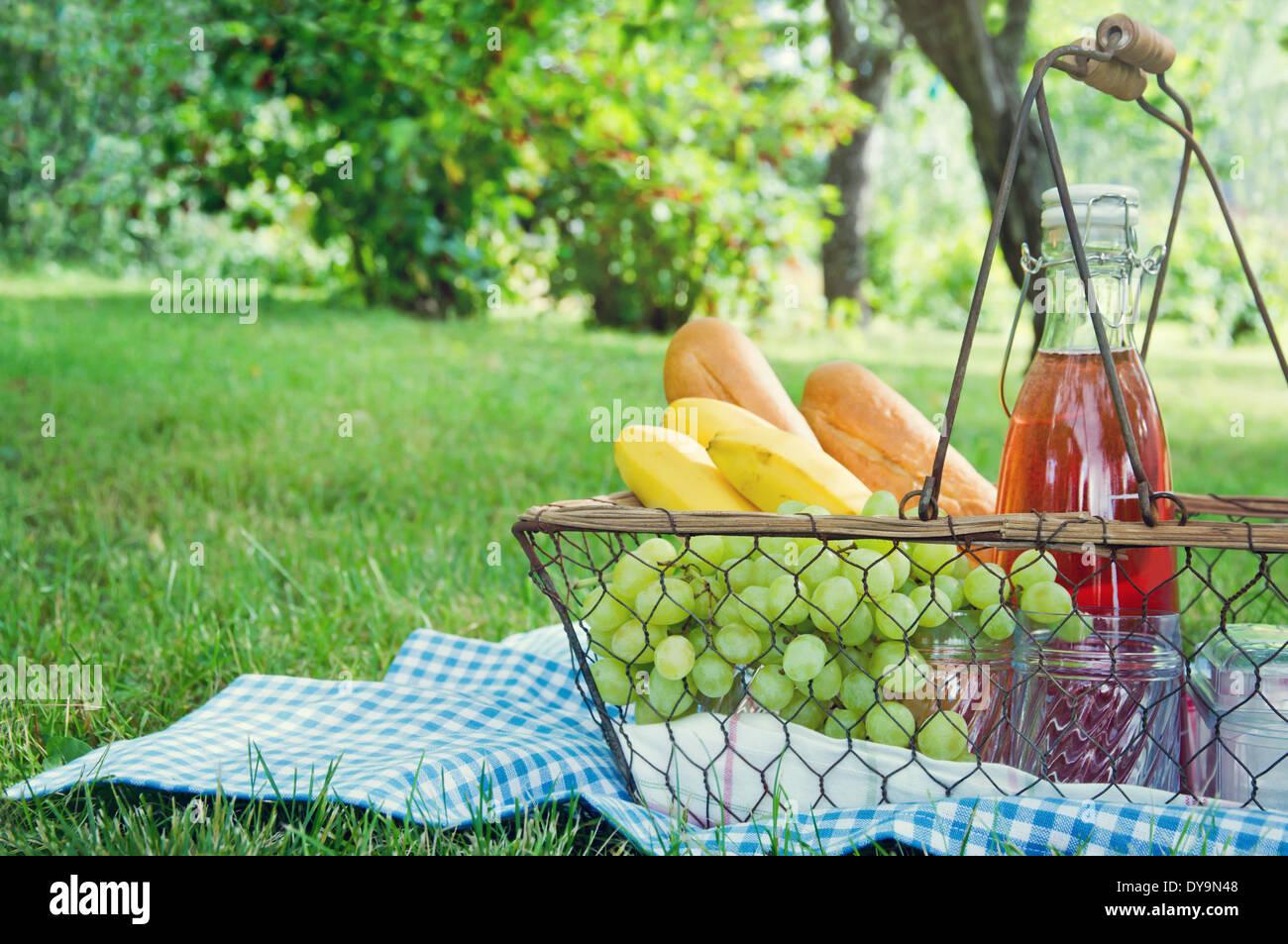 Vintage panier pique nique avec des fruits, du pain et du jus sur couverture bleue dans un jardin d'été vert Banque D'Images