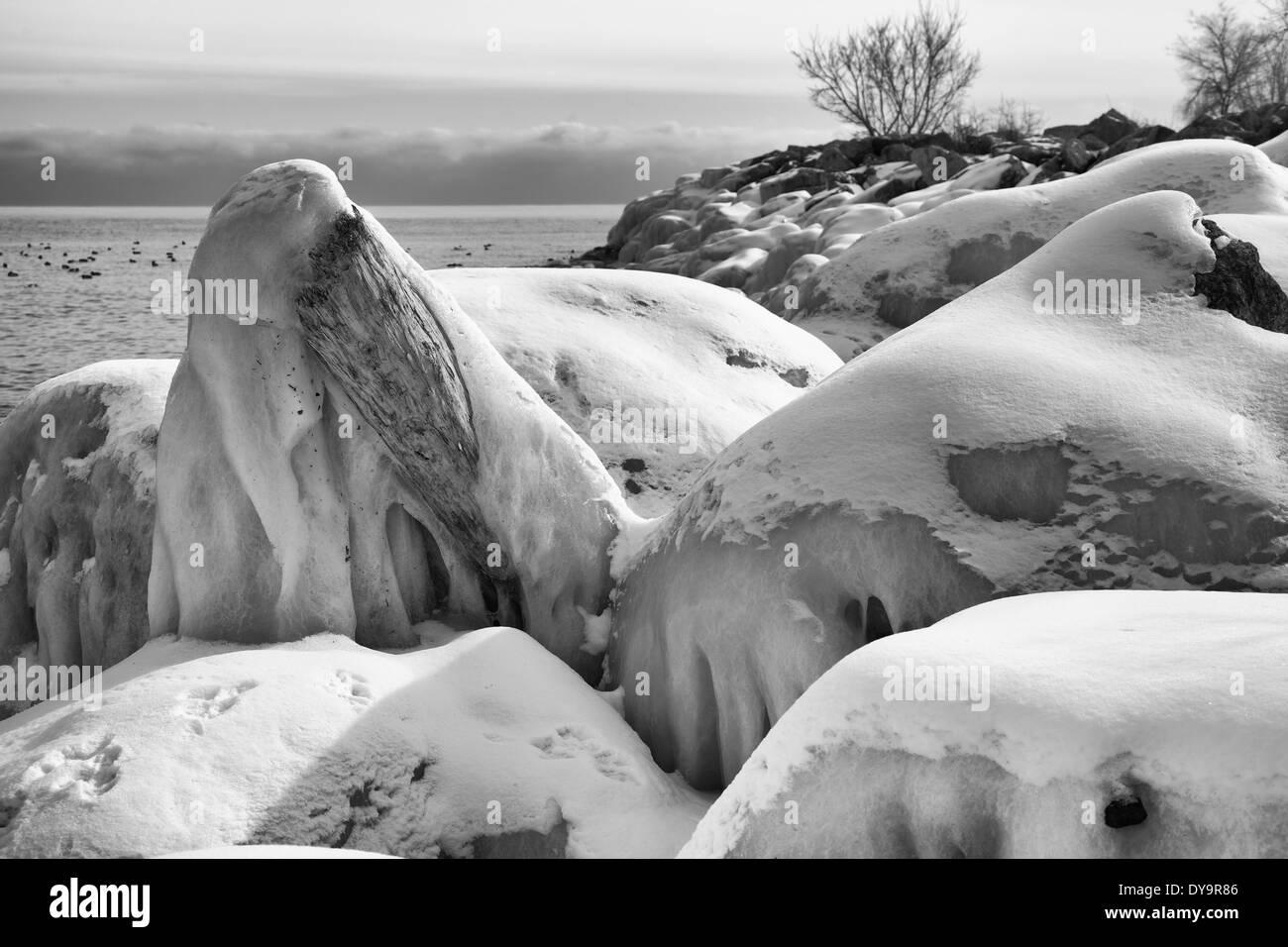 Paysage monochrome de l'hiver lake scene Banque D'Images