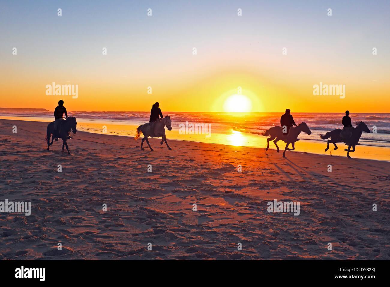 L'équitation sur la plage au coucher du soleil Photo Stock