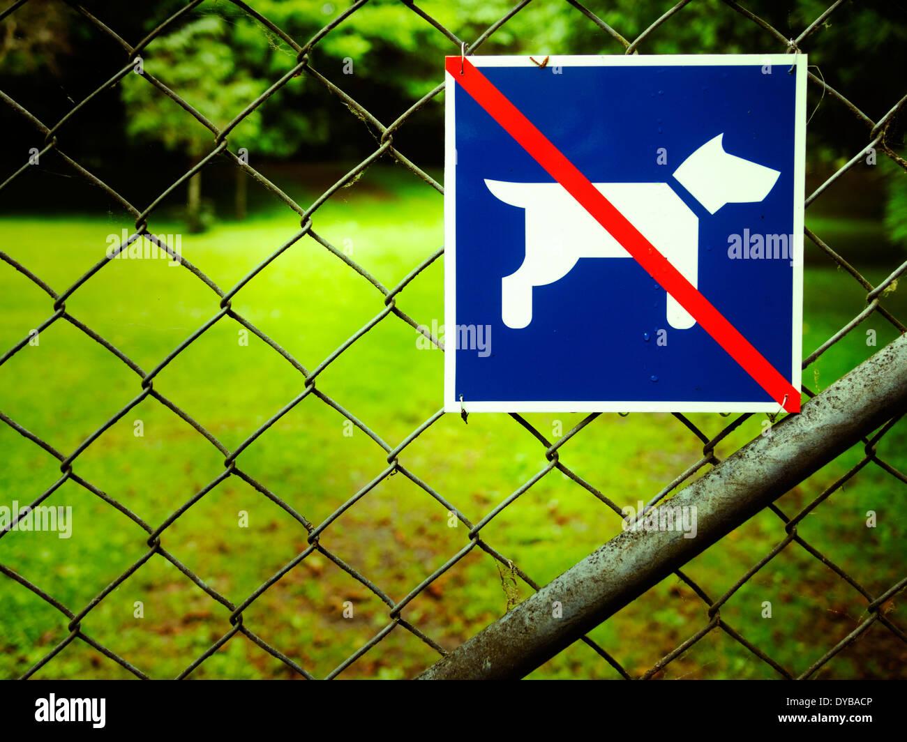 Pas de chiens Banque D'Images