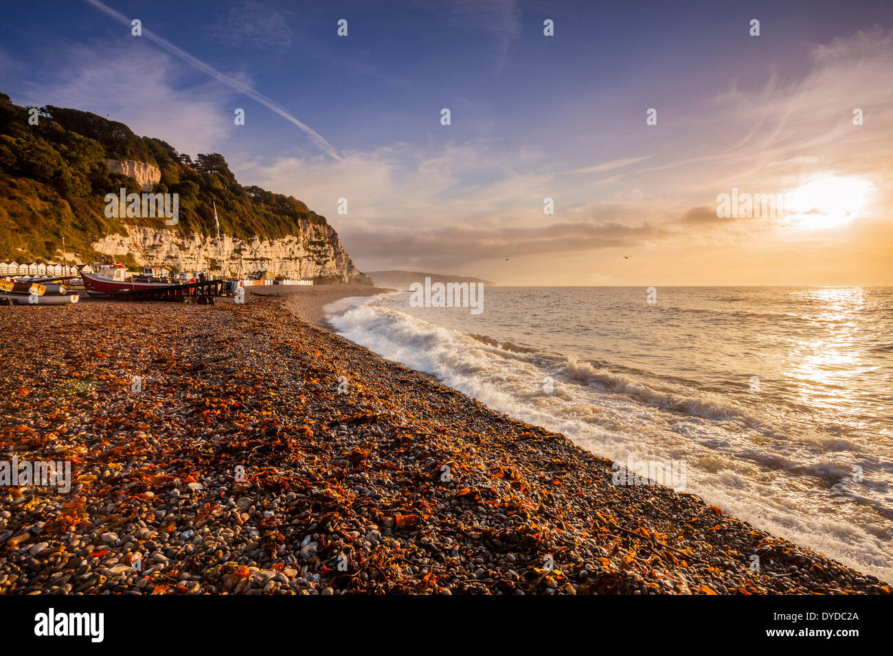 Une vue le long de la côte à la bière dans le Devon. Photo Stock