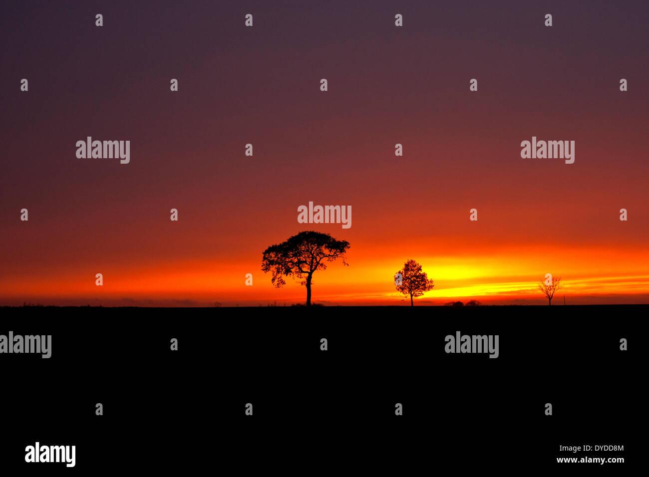 Une tempête coucher du soleil sur les terres agricoles par le village d'Oby à Norfolk. Photo Stock