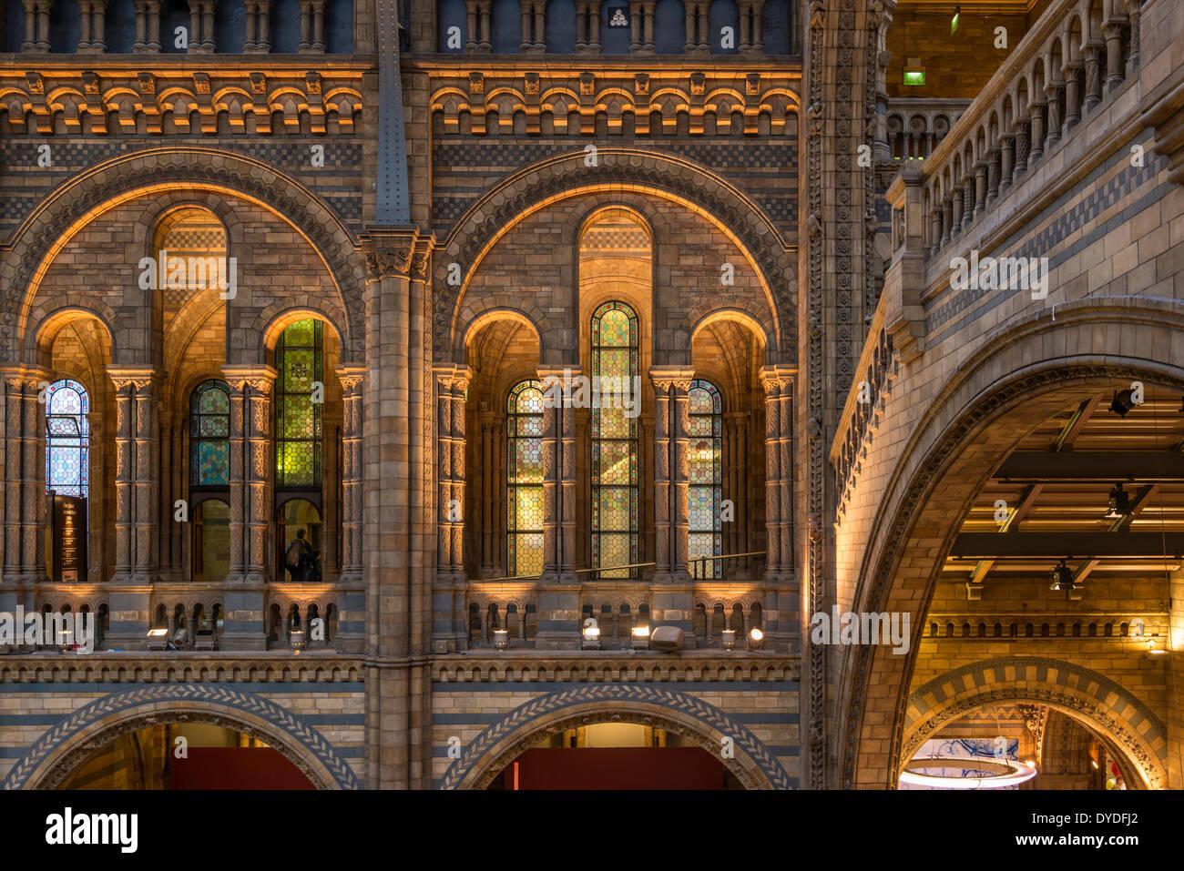 Intérieur de l'histoire naturelle de Londres. Photo Stock