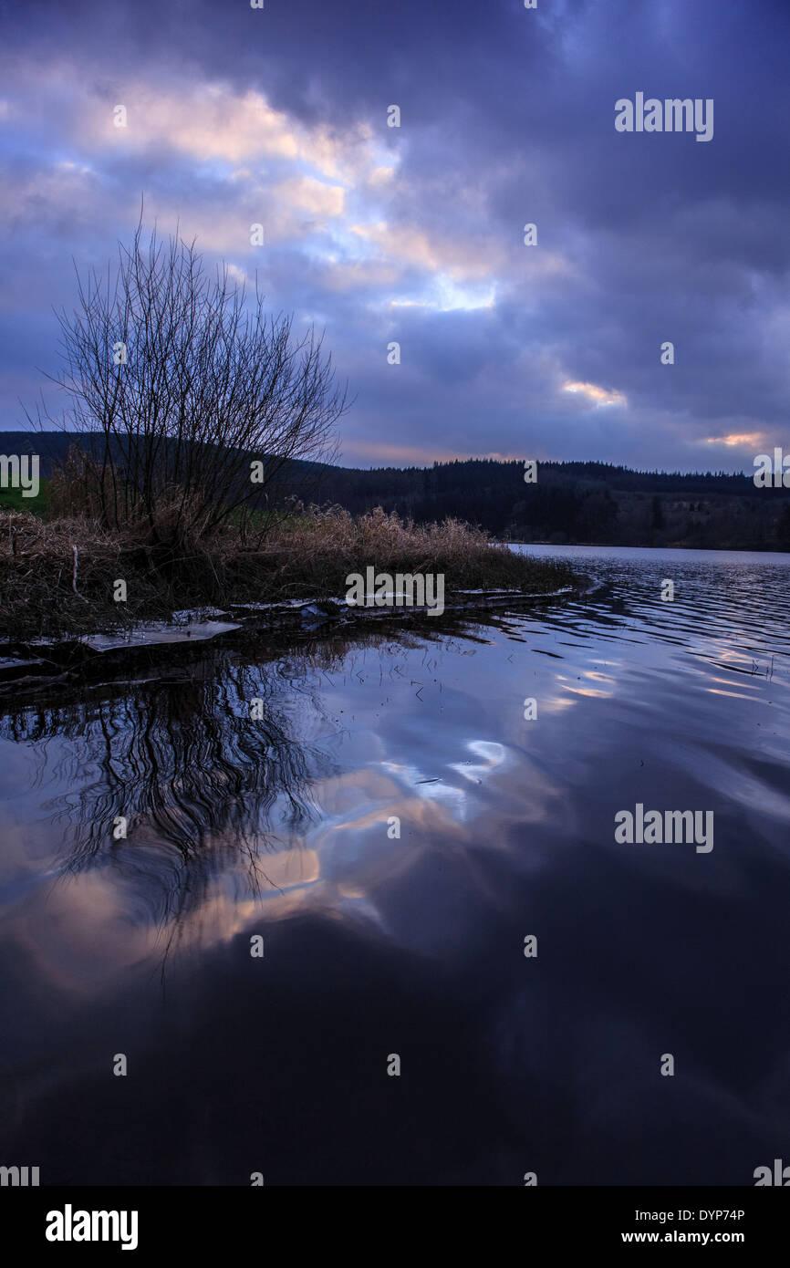 Lone Tree silhouette sur le coucher du soleil d'hiver et se reflètent dans les eaux tranquilles du réservoir d'Llwyn-Onn Photo Stock