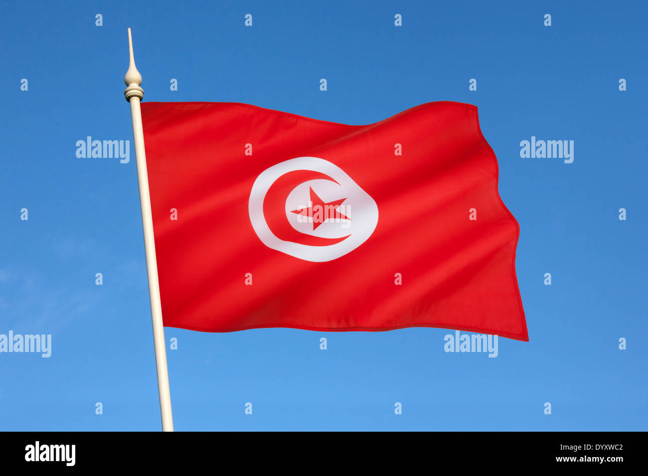 Drapeau de la Tunisie Photo Stock