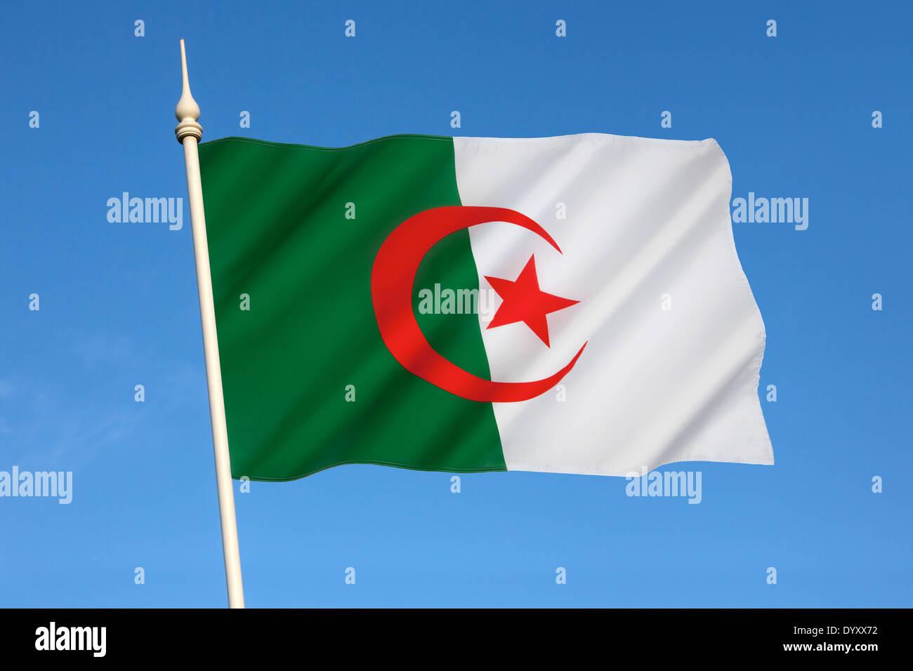 Le drapeau national de l'Algérie Photo Stock