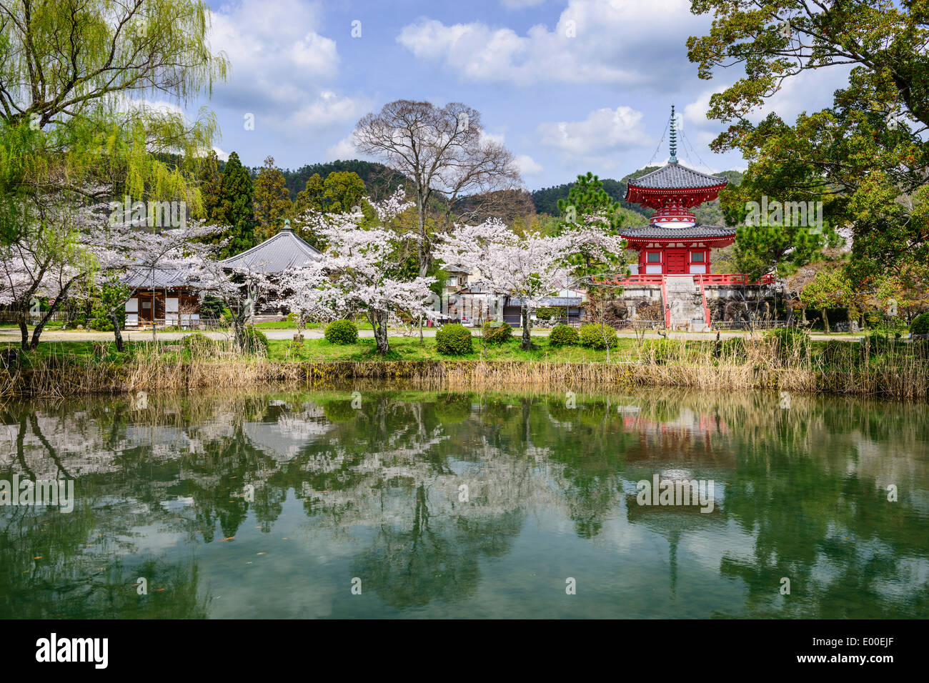 Daikoku-ji à Kyoto, Japon. Banque D'Images