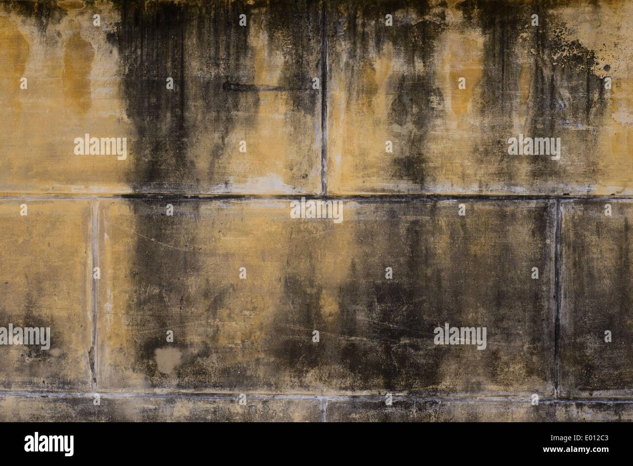 vieux mur arri re plan la lumi re jaune moutarde avec la moisissure noire mur mur de ciment. Black Bedroom Furniture Sets. Home Design Ideas
