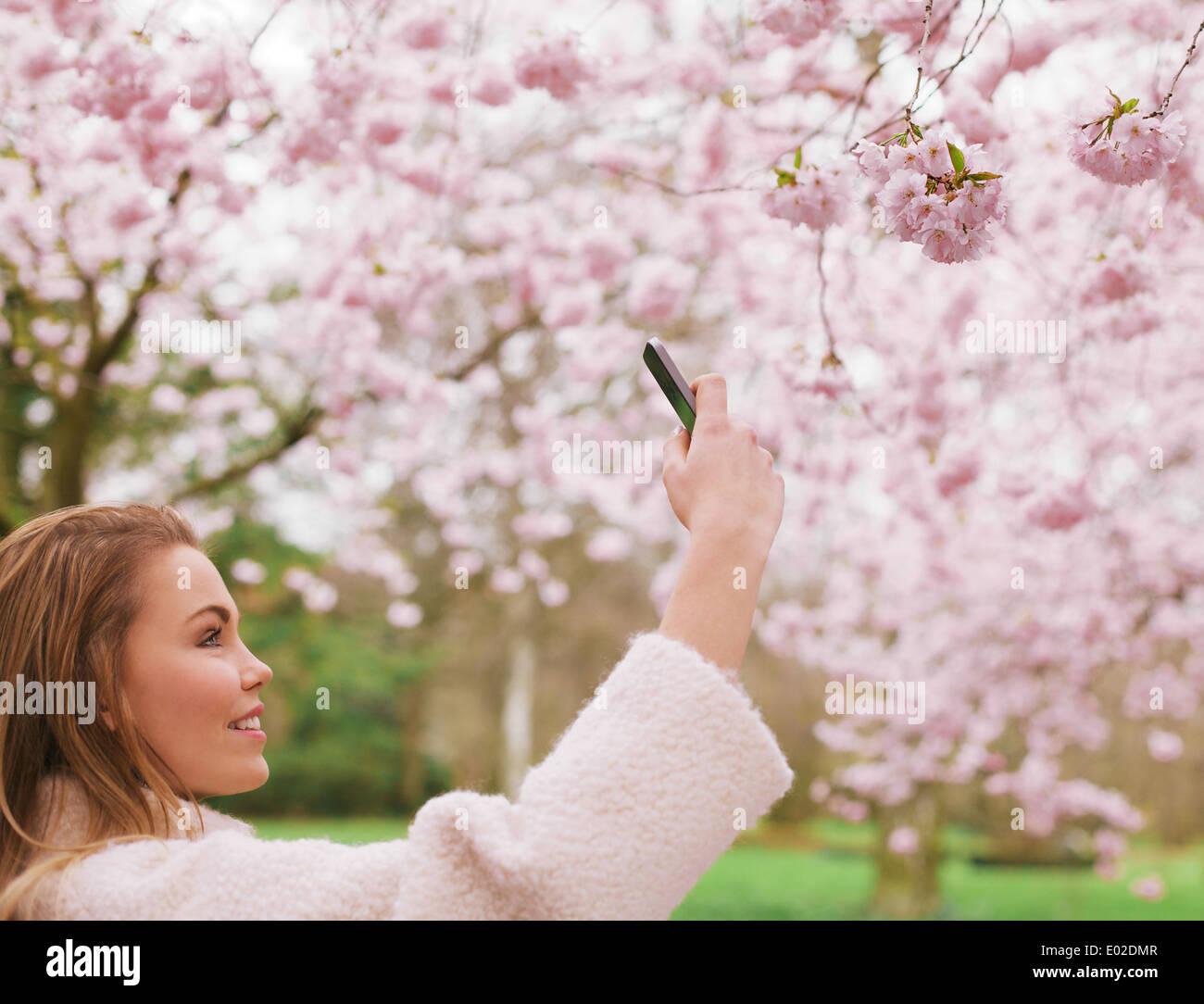 Jolie jeune femme à prendre des photos de fleurs roses fleurs à un parc en fleurs au printemps. Belle prise femelle de race blanche. Photo Stock