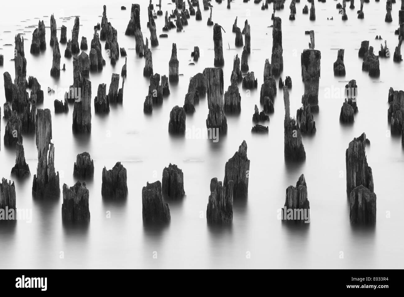 Vieux poteaux de bois dans l'eau, longue exposition Photo Stock