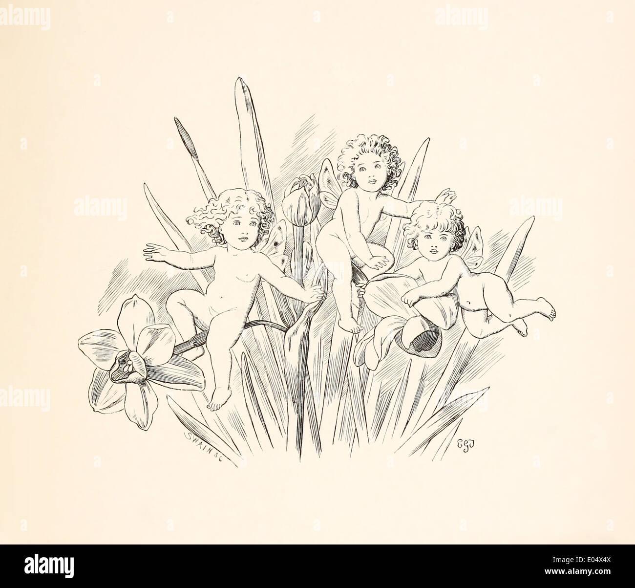 """Emily Gertrude Thomson (1850-1929) Illustration de Lewis Carroll de """"Trois couchers de soleil et autres poèmes"""" publié en 1898. Les Fées Banque D'Images"""