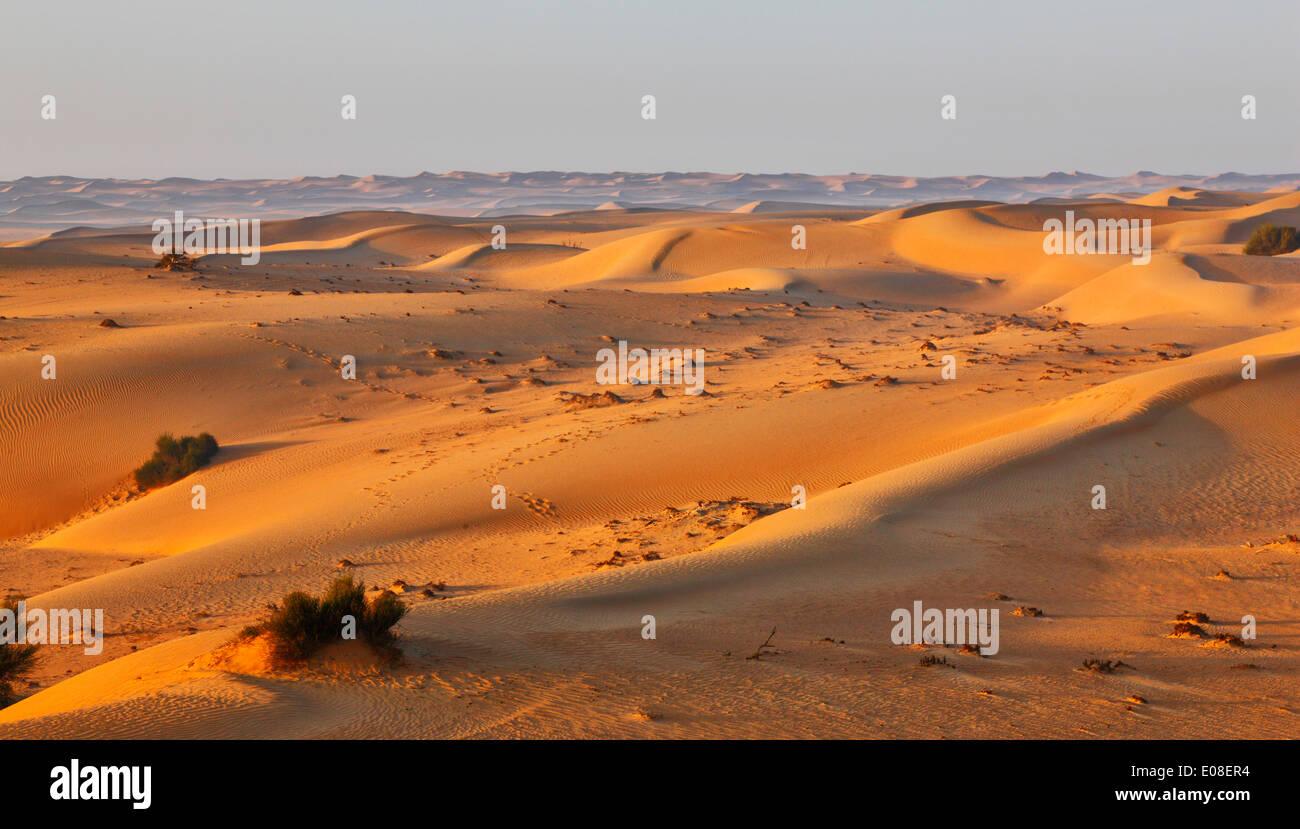 Paysage de dunes de sable dans le désert arabique. Photo Stock