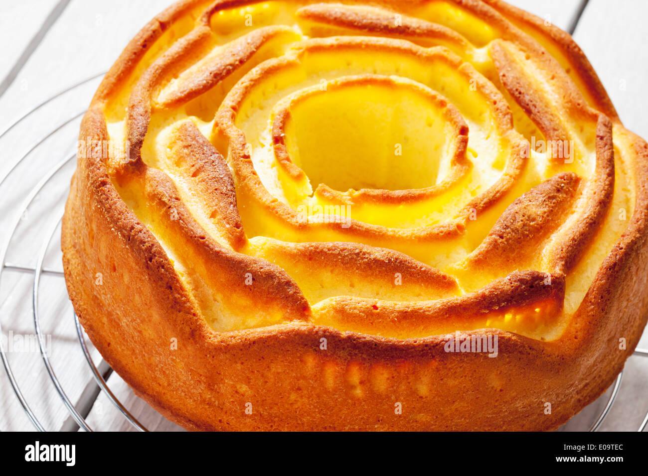 Le gâteau sur une grille de refroidissement Photo Stock