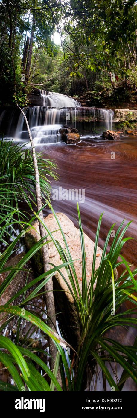Gulik Falls, bord du plateau méridional, Maliau Basin, 'Lost World', Bornéo Banque D'Images