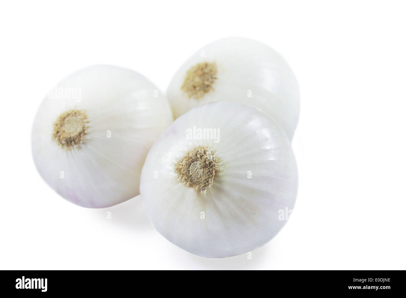 Trois oignons blancs, close-up Photo Stock