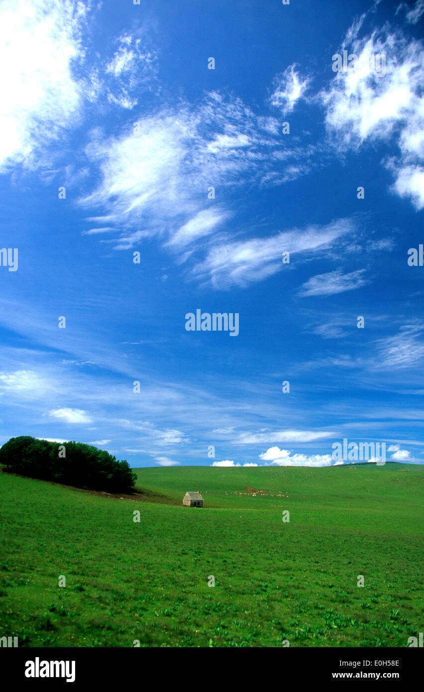 Grange dans un champ vert avec collines et ciel bleu Photo Stock