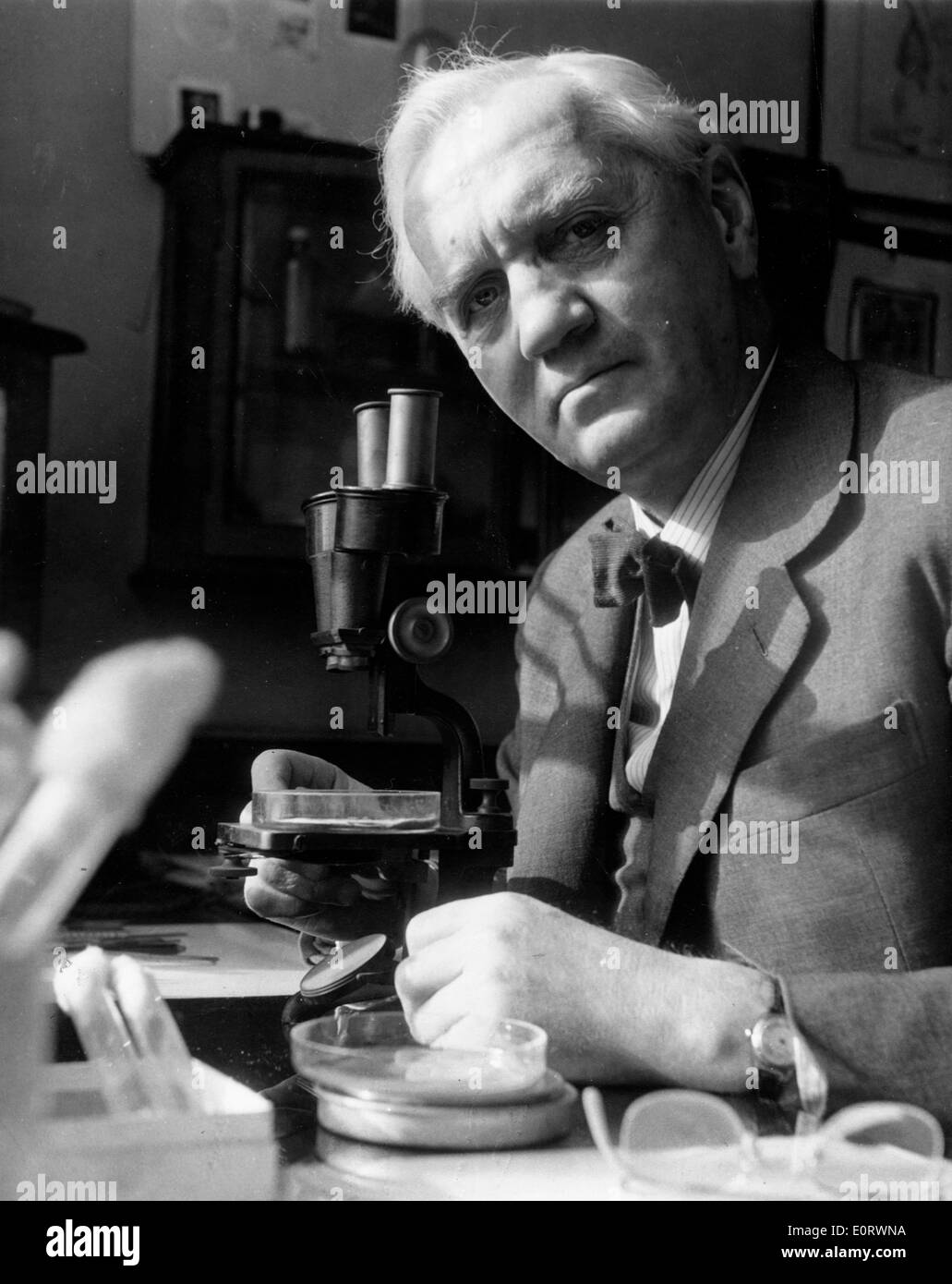 Alexander Fleming biologiste travaille dans son laboratoire Photo Stock