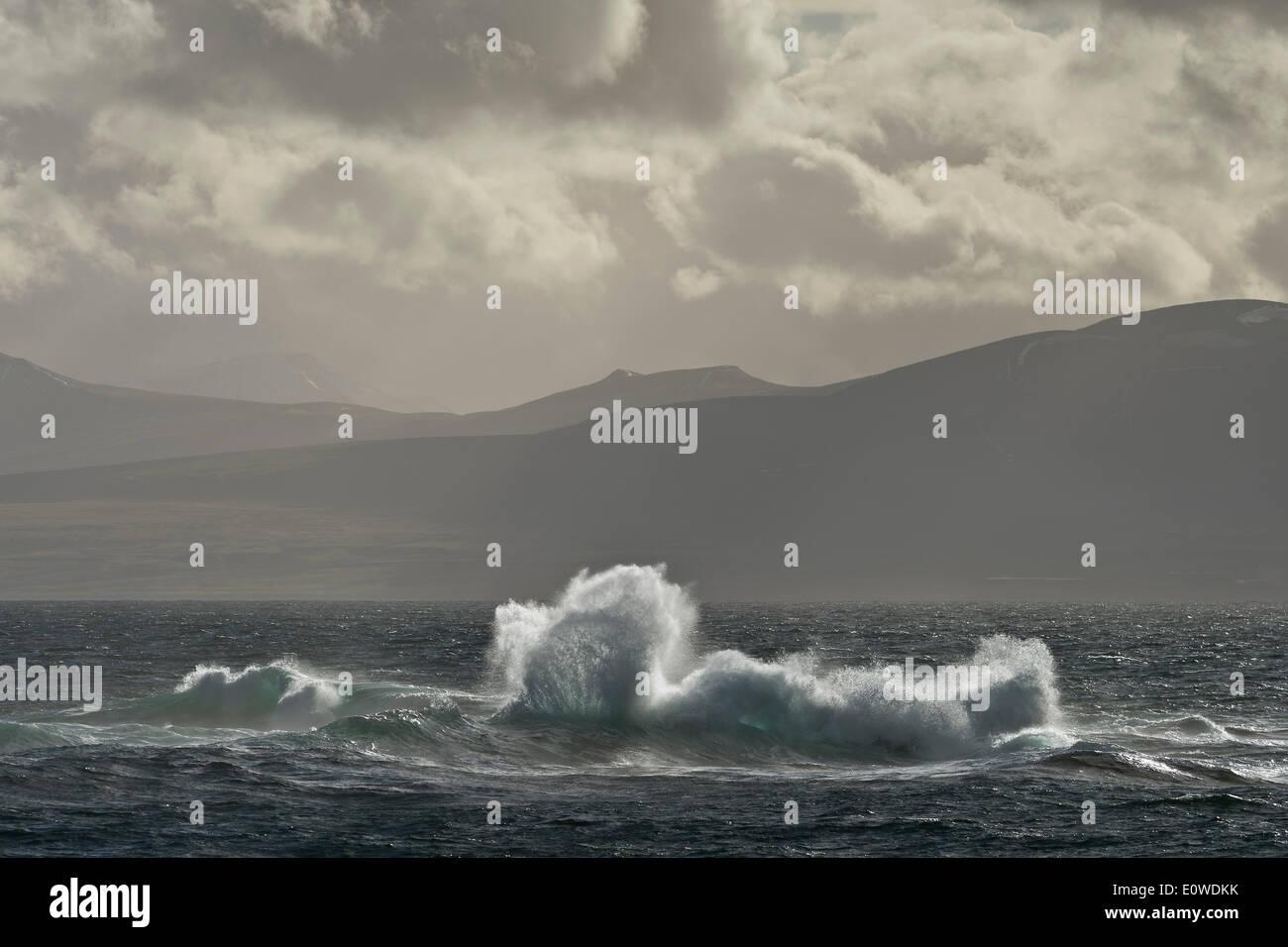 Vagues se brisant sur un récif, Isfjorden, Spitsbergen, Svalbard, îles Svalbard et Jan Mayen (Norvège) Banque D'Images