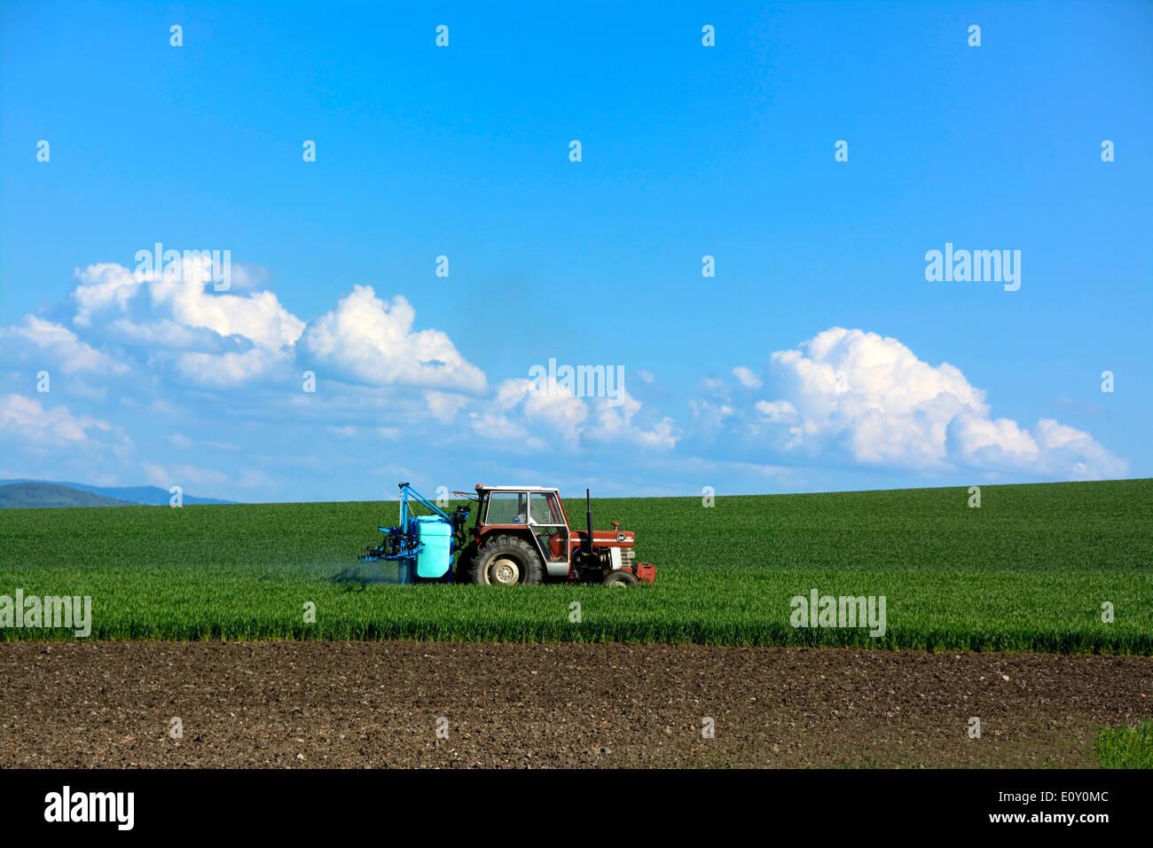 Dans un tracteur agricole sur le terrain Photo Stock