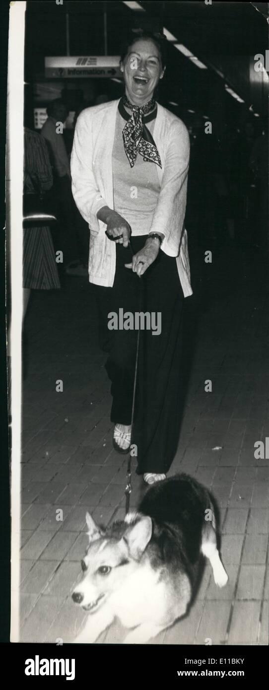 08 août 1976 - Ava Gardner retourne à Londres: Ava Gardner, actrice américaine qui vit à Londres, est retrouvé sur son arrivée à partir de Los Angeles par hen animal Corgi Cara, qui a agi en qualité de blackguard en donnant la chasse à des photographes. L'Ava seul commentaire ''Cara n'aime pas la lampe de poche. Photo Stock