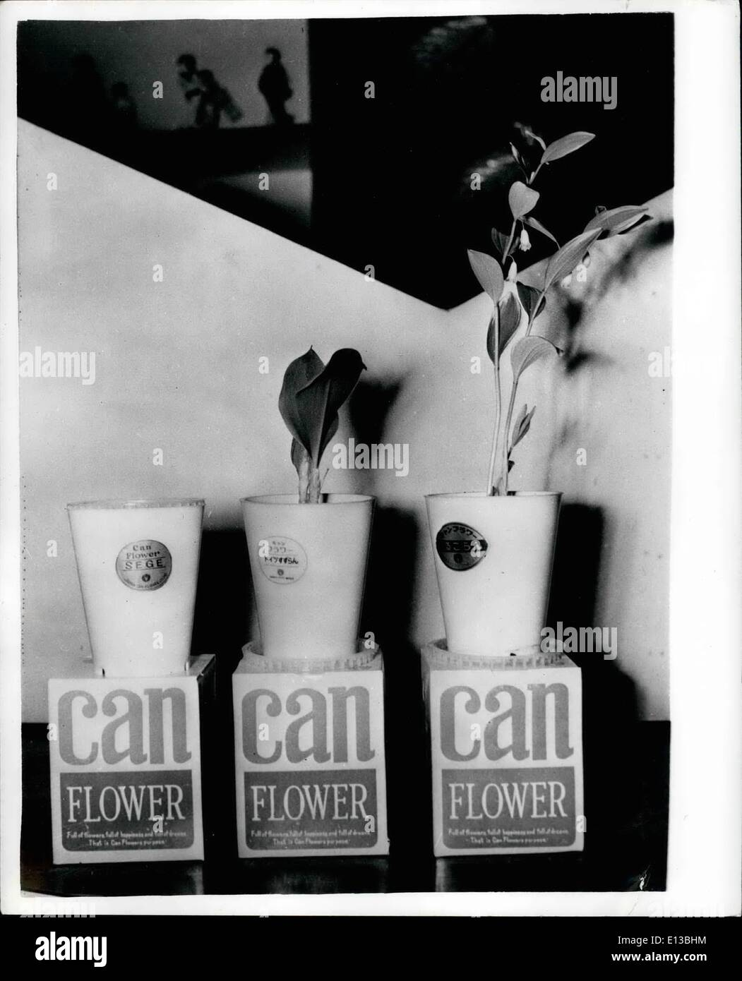 29 février 2012 - Donner à la personne que vous aimez une fleur en conserve - hommes timides peuvent éviter d'être taquiné quand ils portent un bouquet de fleurs à leurs épouses ou fiancées en public maintenant qu'une société japonaise est de mettre des fleurs en conserve sur le marché. Les contenants de plastique qui sont scellées hermétiquement tenir terre fertilisés spécialement avec des graines ou des bulbes. Tout ce que vous avez à faire est d'ouvrir le récipient et l'eau. Photo montre: les fleurs en conserve sur l'affichage à l'Osaka Commerce de f*airf montrant un contenant et non les deux autres à différents stades de croissance. Photo Stock