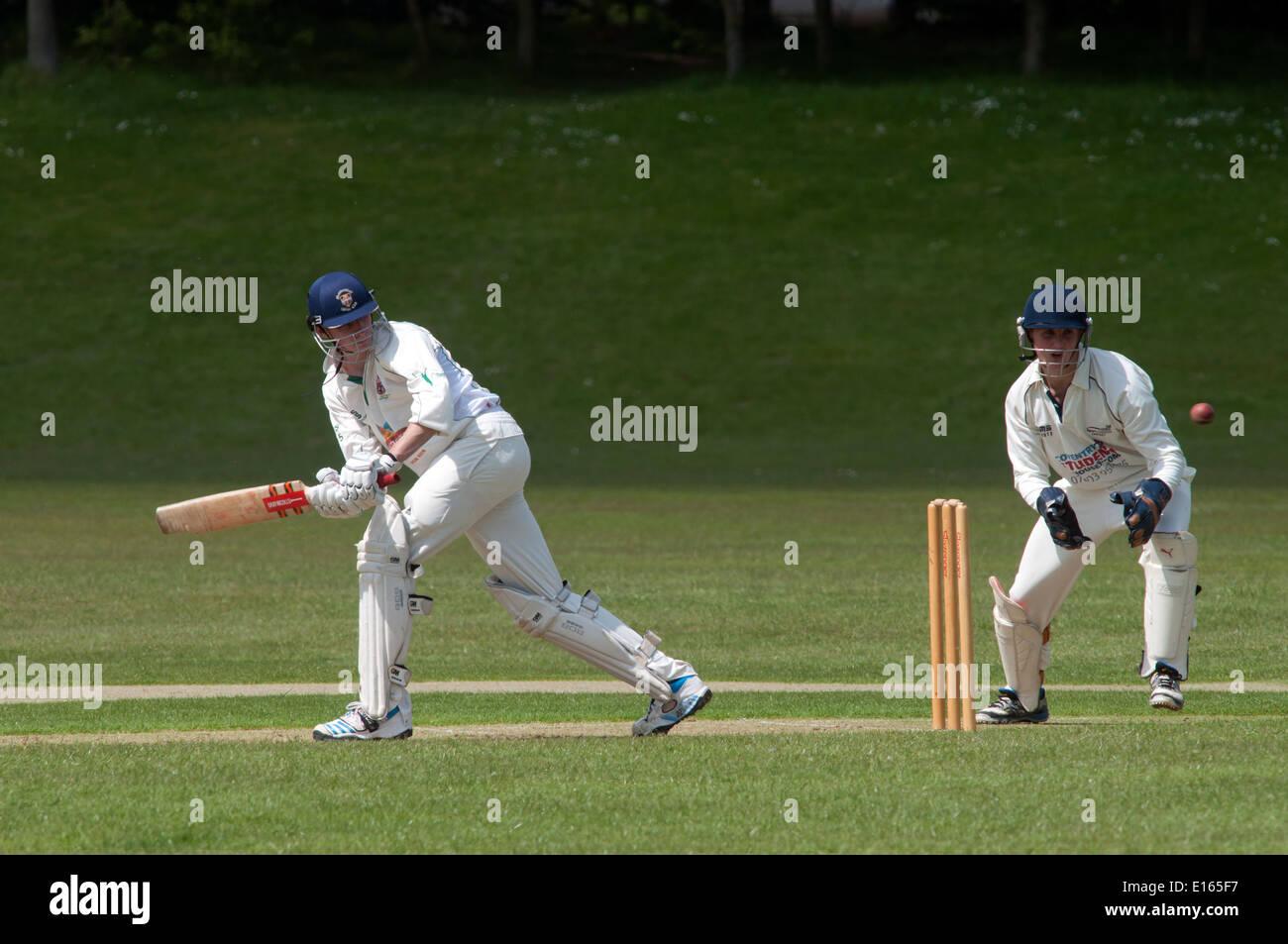 Le sport universitaire, men's cricket à l'Université de Warwick, England, UK Photo Stock
