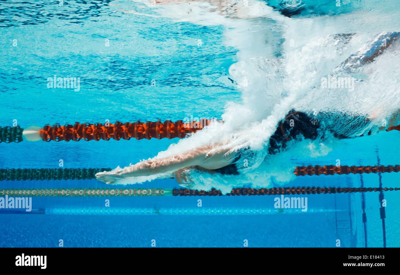 Plongée en piscine nageur Photo Stock