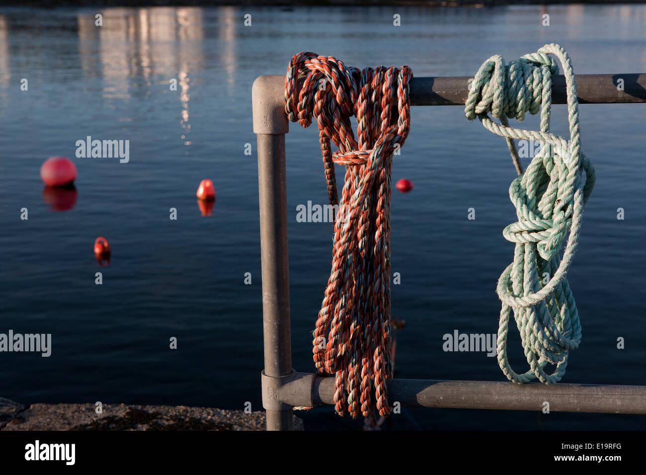Attaché à une corde de métal, sans personnes. Photo Stock