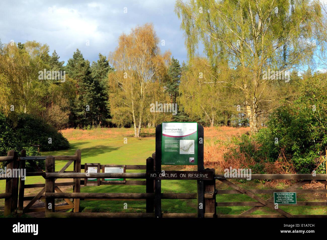 Dersingham Bog, Norfolk, l'entrée de la réserve naturelle, Natural England UK se réserve sites site Photo Stock