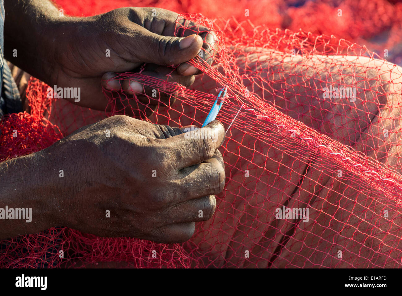 Les mains d'un pêcheur réparant les filets de pêche, Munnar, Kerala, Inde Photo Stock