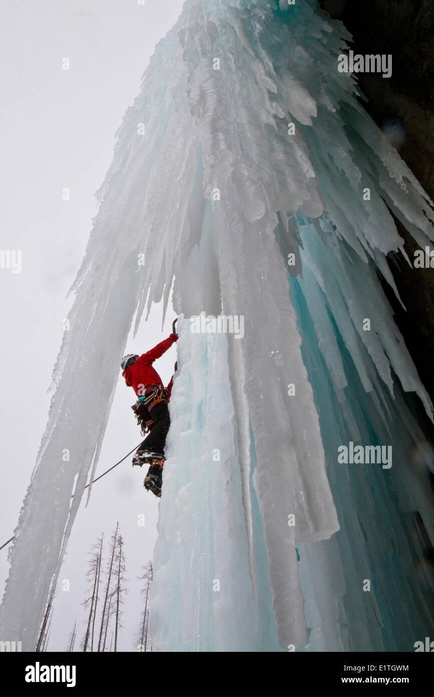 Jeune homme l'escalade sur glace dans le parc national de Banff, près de Banff, Alberta, Canada. Photo Stock