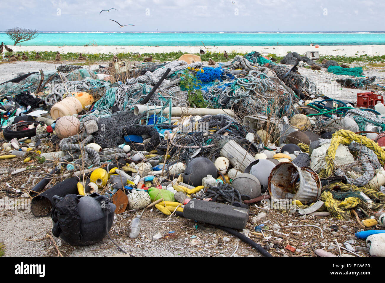 Les déchets plastiques recherche recueillies pour évaluer la pollution plastique de tracé Est de Photo Stock