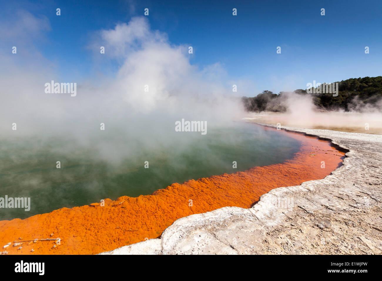 Champagne Pool dans le Wai-O-Tapu (eaux sacrées) Thermal Wonderland sur l'Île du Nord en Nouvelle-Zélande - la piscine Banque D'Images