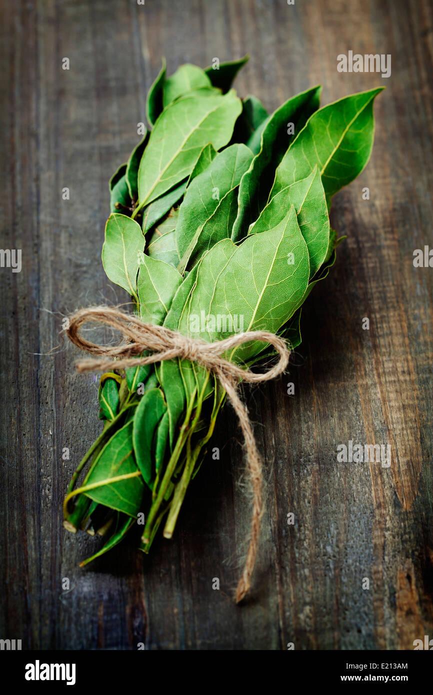 Succursale de laurel bay feuilles sur une planche en bois Photo Stock
