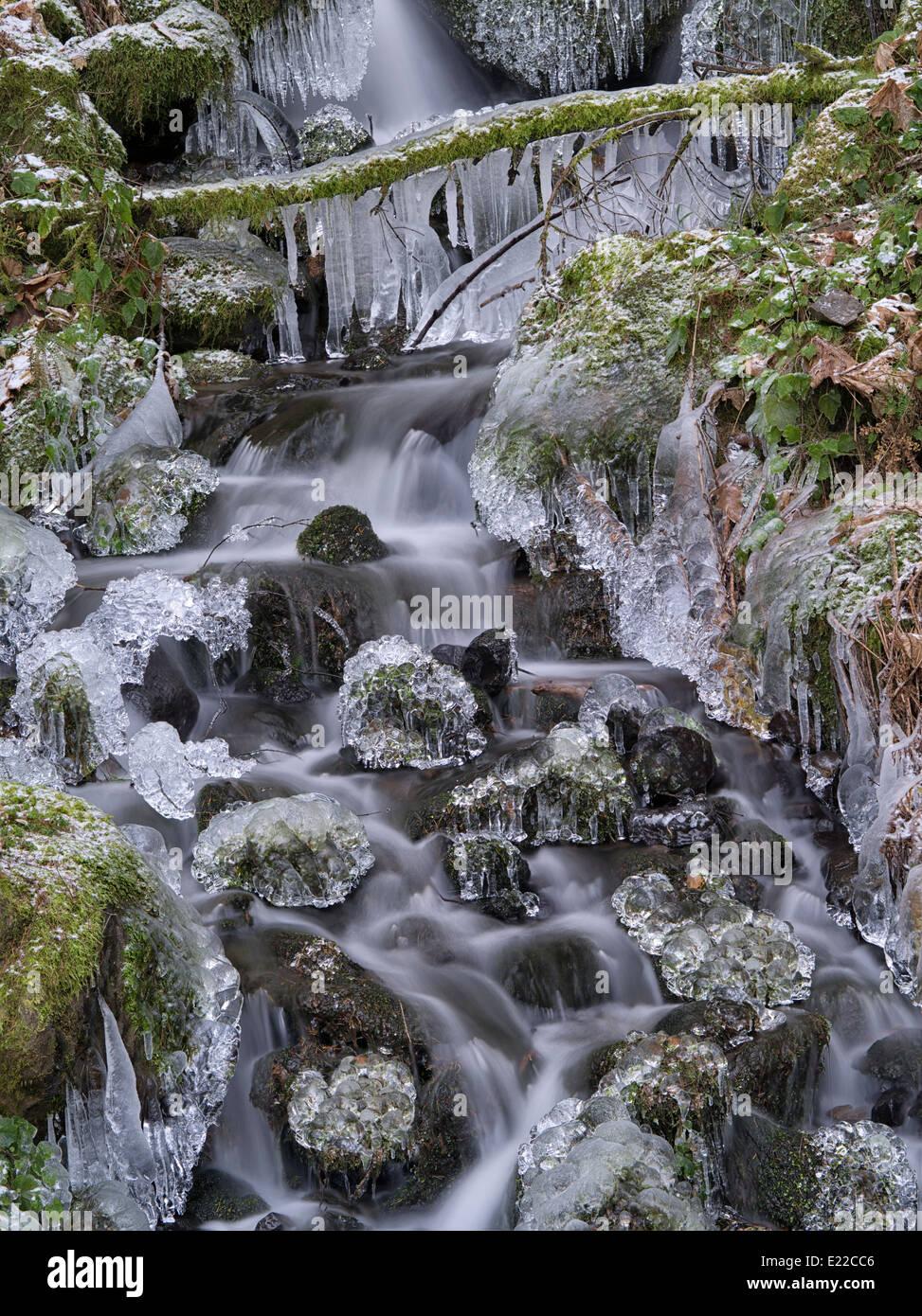 Petit cours d'eau d'alimentation saisonnière de glace. Columbia River Gorge National Scenic Area, New Photo Stock