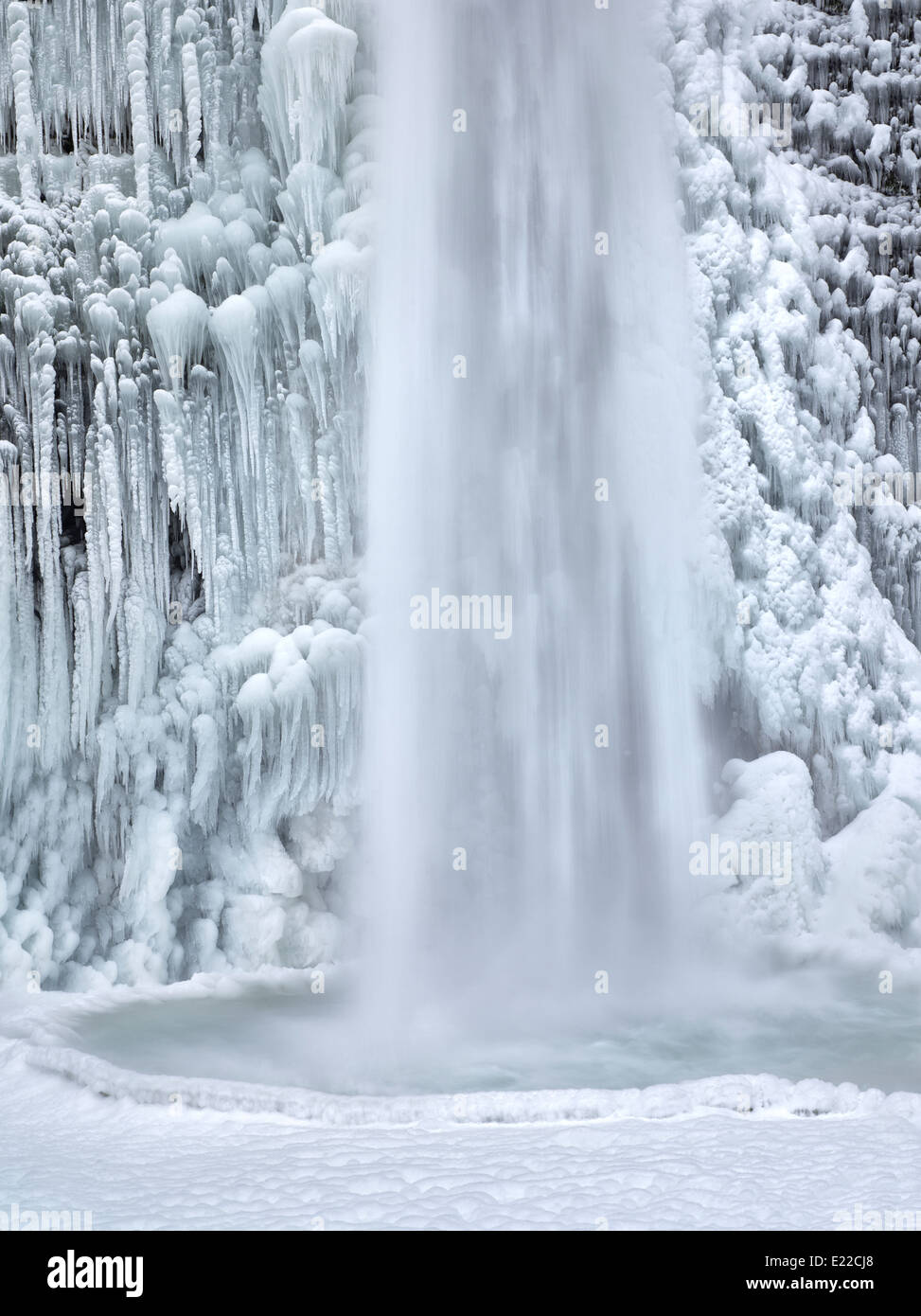 Close up de prêle Falls avec de la glace et de la neige. Columbia River Gorge National Scenic Area, New York Photo Stock