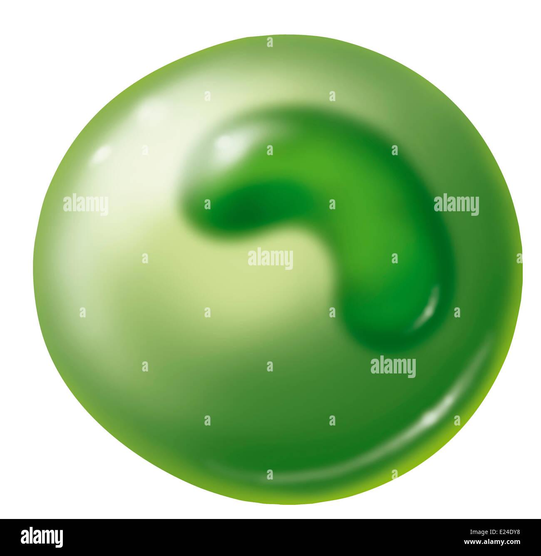 Cellule immunitaire, dessin Photo Stock