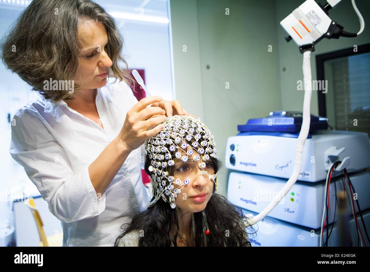 Étude du cerveau Photo Stock