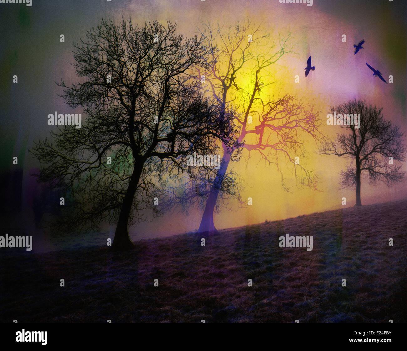 L'art numérique: les oiseaux Photo Stock