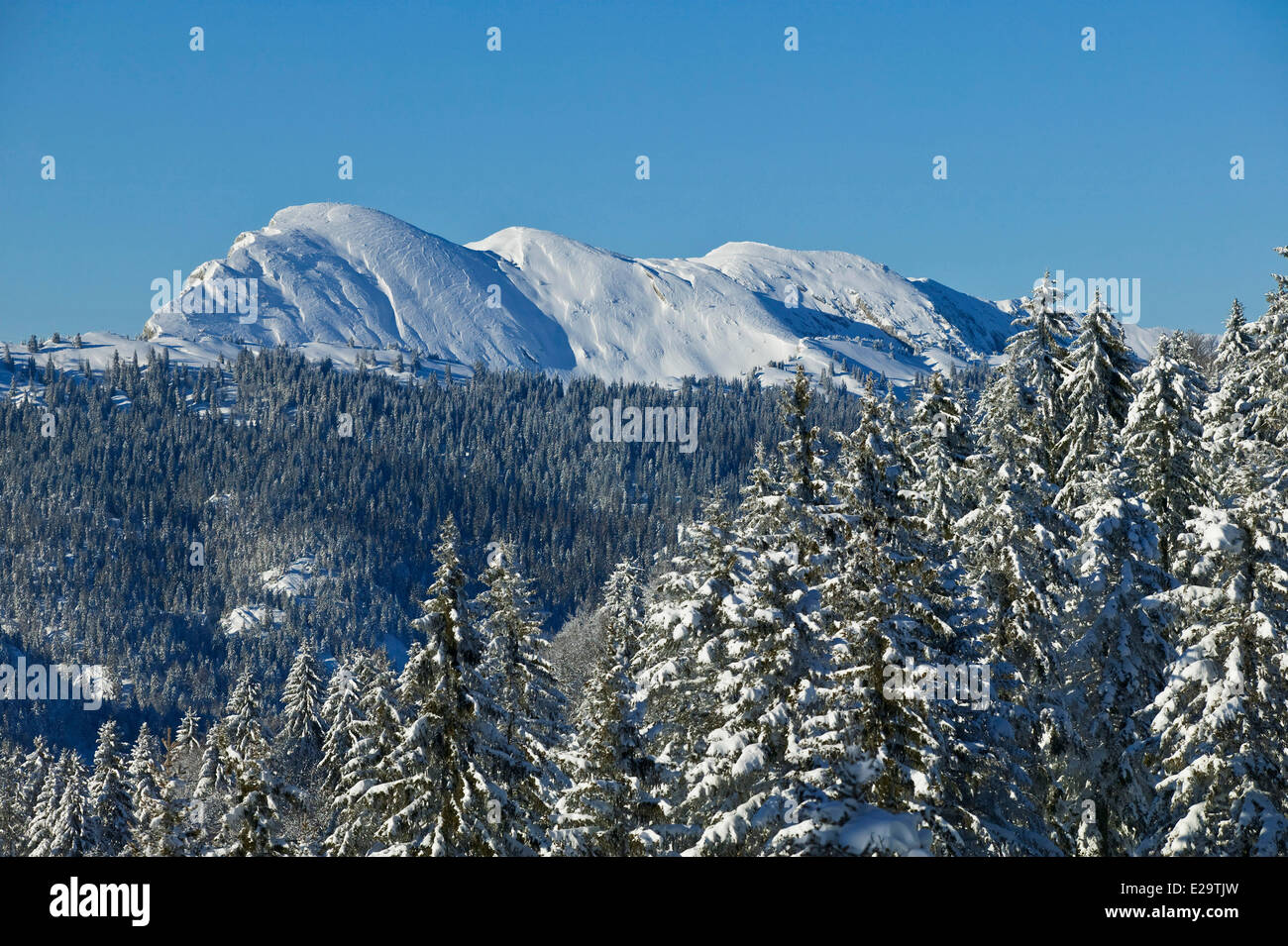 France, Isère, la Grande-vous dans le Parc naturel régional de Chartreuse (Parc naturel régional Photo Stock