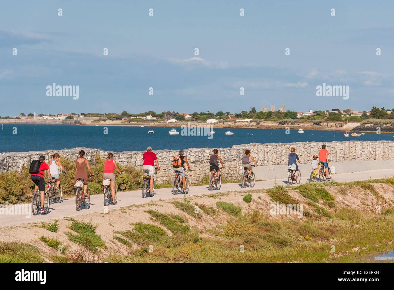 France Charente Maritime Ile De Re La Piste Cyclable Entre Saint Martin De Re Et De La Couarde Photo Stock Alamy
