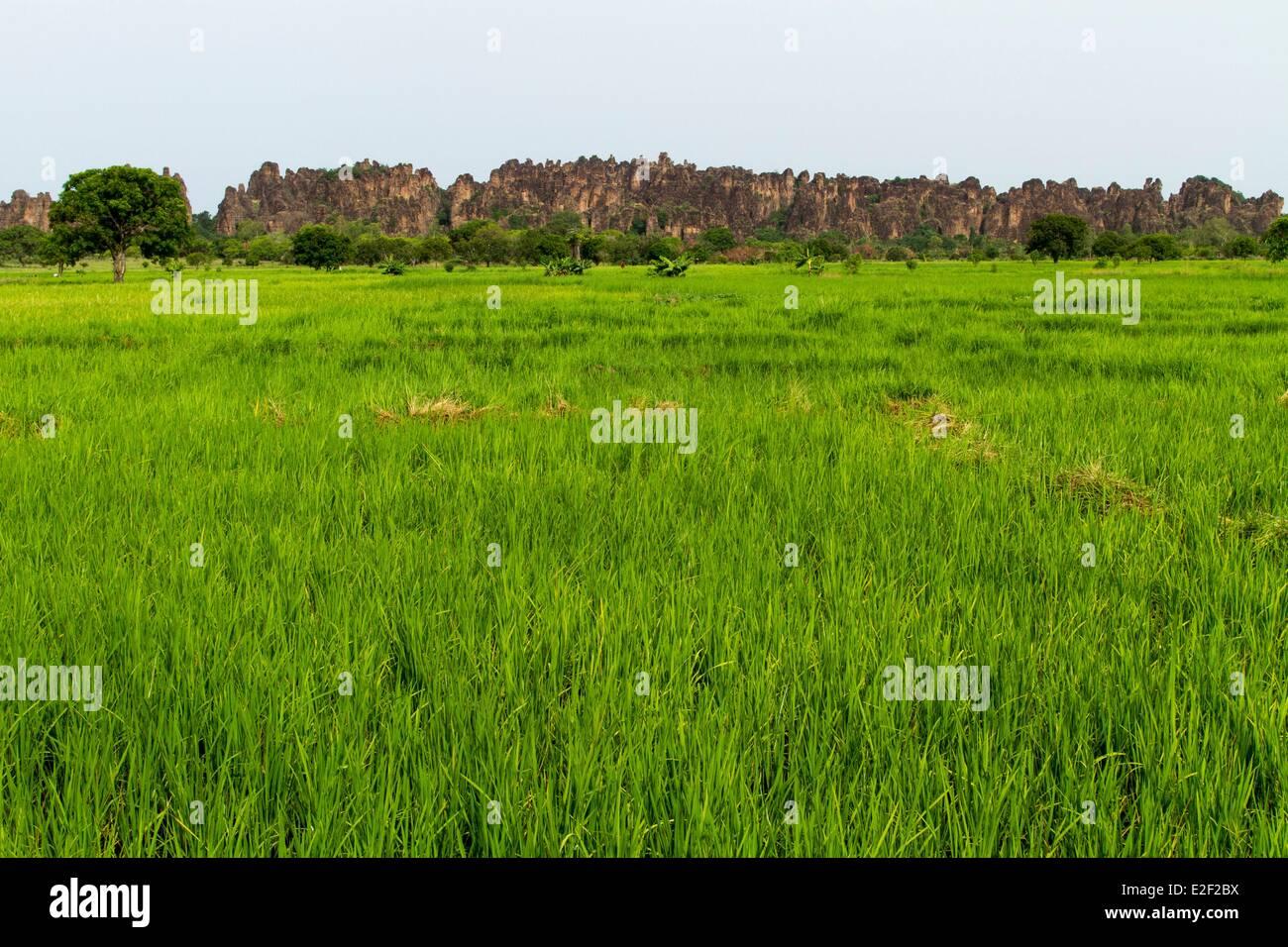 Le Burkina Faso, région sénoufo, pics de Sindou Photo Stock