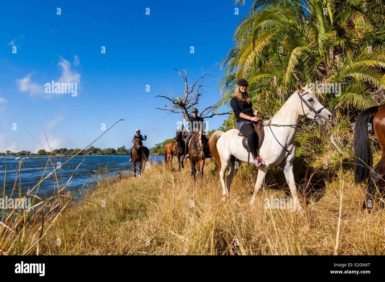 Zimbabwe Département safari à cheval à Victoria Falls National Park aux côtés de la rivière Photo Stock